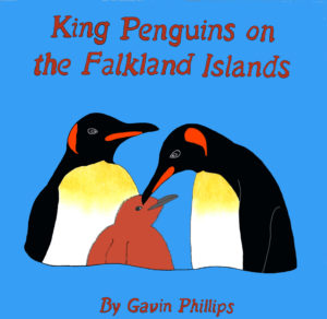 King Penguins on the Falkland Islands